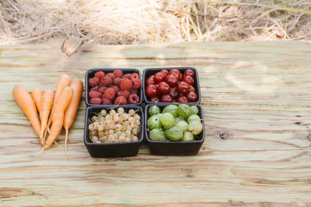 ingridients: Carrots and various berries on the wooden surface. Ingridients are ready for the cooking Stock Photo