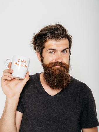 funny bearded man: handsome bearded man with stylish hair beard and mustache on funny face in shirt holding white cup or mug with good morning text drinking tea or coffee in studio on grey background