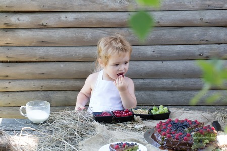 pinafore: Cute little boy in white pinafore eats berries raspberry gooseberry cherry currant at table with fruit cake and cup of milk on wooden background Stock Photo