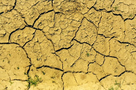 waterless: Dry soil with cracked waterless surface texture of brown earth on natural background
