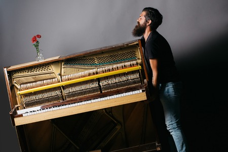 handsome bearded strong man with stylish hair mustache and beard trying to move old wooden or wood open piano with keyboard and glass vase with red rose flowers on grey background, copy space Banque d'images
