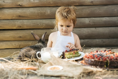 pinafore: Cute boy in white pinafore and little rabbit at table served with fruit cake and cup of milk outdoors on wooden background Stock Photo
