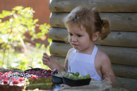 pinafore: Cute little boy with blond hair in white pinafore eats red raspberry at rustic table with berries and fruit cake on wooden background