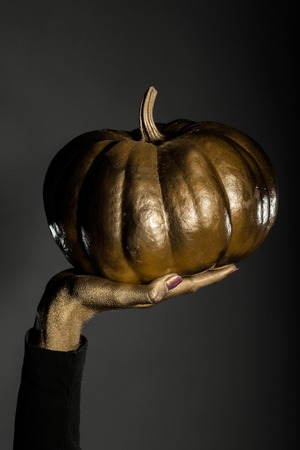 autumn colouring: halloween symbol of painted gold pumpkin vegetable metallized color in female golden hand on grey background