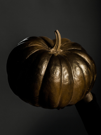 cinderella pumpkin: halloween symbol of painted gold pumpkin vegetable metallized color on grey background