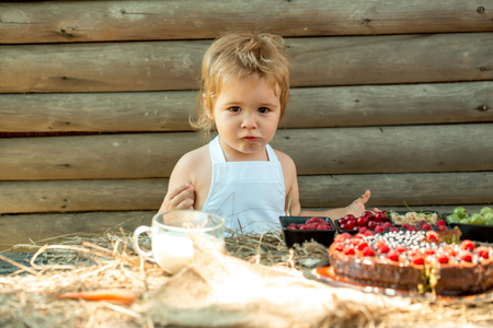 Cute little boy in white pinafore eats berries raspberry gooseberry cherry currant at table with fruit cake and cup of milk on wooden background Archivio Fotografico