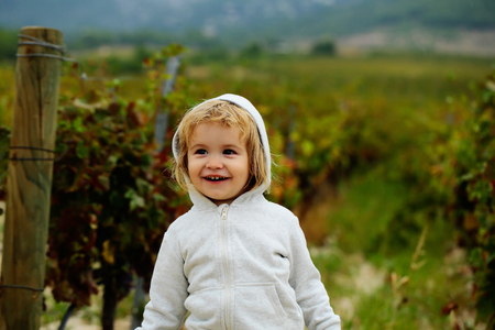 hoody: Cute baby boy child with curly blond curly hair in gray hoody and jeans smiling on vineyards background