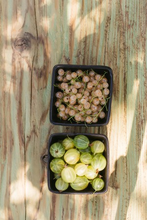 gooseberry and white grape or currant berry fruit assortment red and green color with healthy vitamins on wooden or wood table