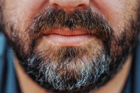 masculinity: Greying beard and moustache with grey hair over lips on unshaved masculinity face of mature middle-aged man Stock Photo