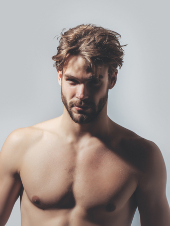 macho: Handsome guy fashion sexy young bearded macho man model with bare muscular chest on grey background