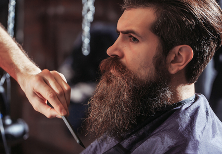 hairdressing saloon: Handsome bearded man, hipster, brunette with beard and moustache has haircut or clippering in hairdressing saloon or barbershop. Barber works with comb