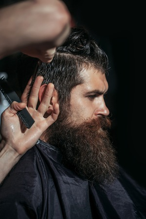 hairdressing saloon: Handsome bearded man, hipster, brunette with beard and moustache has haircut in hairdressing saloon or barbershop. Barber works with scissors and comb