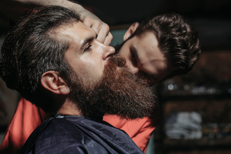 hairdressing saloon: Handsome bearded man, hipster, brunette with beard and moustache has haircut or clippering in hairdressing saloon. Barber works in barbershop