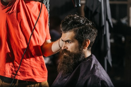 styler: Handsome bearded man, hipster, brunette with beard and moustache has blow dry in saloon or barbershop. Barber works with hair or styler dryer