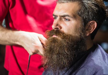 Handsome bearded man, hipster, brunette with beard and moustache has haircut or clippering in hairdressing saloon or barbershop. Barber works with clipper
