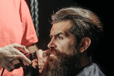 hairdressing saloon: Handsome bearded man, hipster, brunette with beard and moustache has haircut or clippering in hairdressing saloon or barbershop. Barber works with clipper and comb