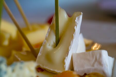 Delicious cheese plate with brie, camambert, gauda with garnishes, grapes, oranges and nuts on blurred background