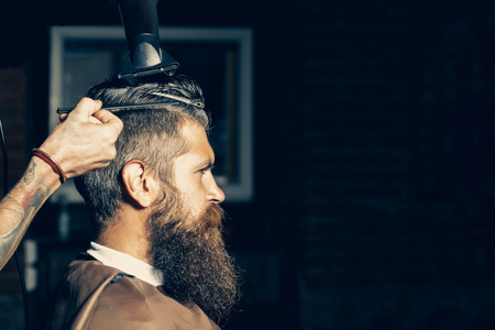 Bearded man with long beard, brutal, caucasian hipster with moustache, getting hair styling with blow dryer and comb by hairdresser at barbershop, copy space