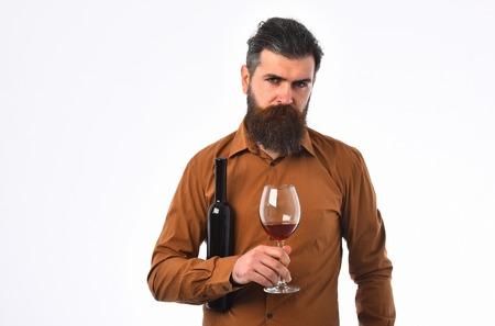 Bärtiger Mann, Langer Bart, Brutal Kaukasisch Hipster Mit ...