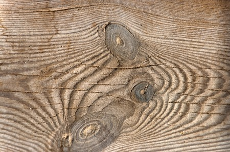 Brown wooden board with knots, woody stem, organic material with natural wood texture, as timber background Фото со стока