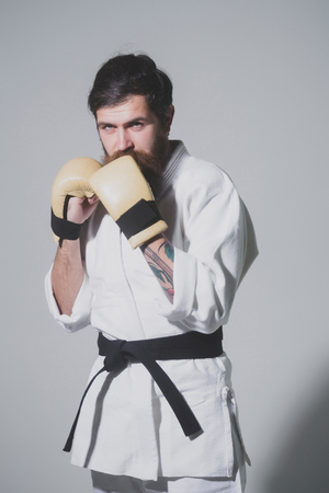 bearded karate man, long beard, brutal caucasian hipster with moustache in white kimono with black belt and boxing gloves with serious face on grey background, unshaven guy