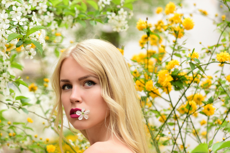 girl or pretty woman with blonde hair and red lips, cherry flower at blossoming tree in spring garden outdoor on natural background Stock Photo