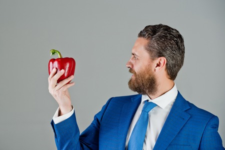 businessman or man with beard holding red fresh vegetable of sweet pepper in blue formal outfit with happy smiling face on grey background, healthy food and dieting