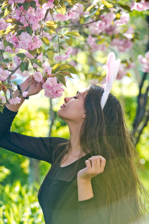 girl or pretty woman with rosy bunny ears and long, brunette hair smelling blossoming sakura flowers from tree in spring park on sunny day on blurred floral environment. Easter. Springtime
