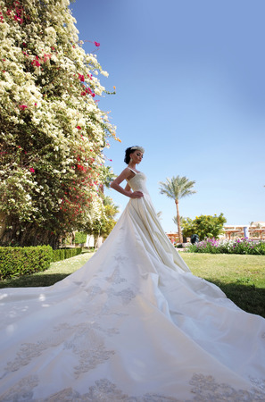 Wedding fashion. Pretty girl or cute woman, bride, wearing beautiful, long, white dress on green grass in garden with blossoming flowers in resort place on sunny day on natural background