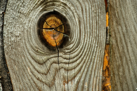 wood texture, old yellow knot on dry, hard, cracked wooden board or plank surface, unpainted panel of natural color as timber background. Stability, shelter, strength. Carpentry