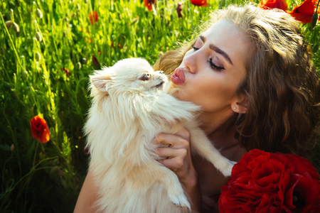 girl kiss pomeranian spitz or cute dog pet in hands with smiling face in red dress in flower field of poppy seed with green stem on natural background, summer and love
