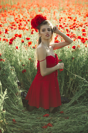 girl with long curly hair in red dress hold flower bouquet in field of poppy seed with green stem on natural background, summer, spring, drug and love intoxication, opium Stock Photo
