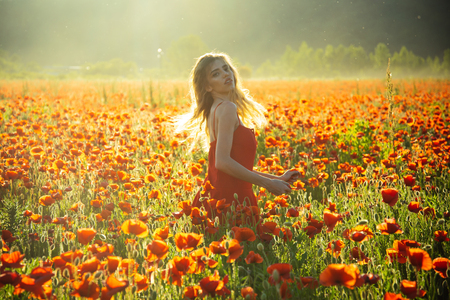 poppy seed and girl with long curly hair in red dress in flower field with green stem on natural background, summer, spring, drug and love intoxication, opium
