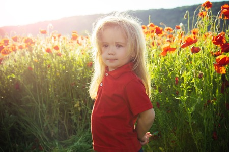 infatuation: small boy or child with long blonde hair in red shirt in flower field of poppy seed with green stem on natural background, summer, spring, childhood and happiness, opium, ecology and environment