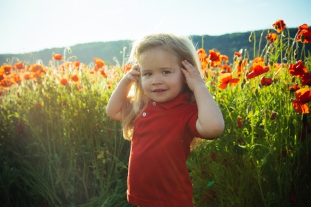 kid or smiling little boy with long blonde hair in red shirt in flower field of poppy with green stem on natural background, summer, spring, childhood and happiness, opium, ecology and environment Stock Photo