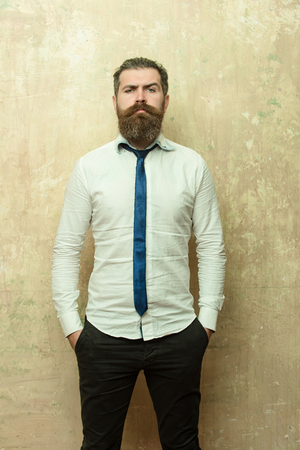 bearded man or hipster with long beard and stylish hair on serious face in tie and white shirt on textured beige background Imagens