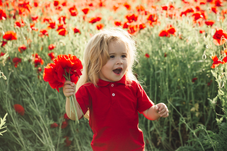small boy. child with long blonde hair in red shirt in flower field of poppy hold bouquet on natural background, summer, spring, childhood and happiness, opium, ecology and environment
