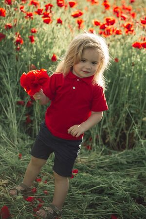 infatuation: kid or smiling little boy with long blonde hair in red shirt in flower field of poppy with green stem on natural background, summer, spring, childhood and happiness, opium, mothers day Stock Photo