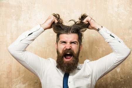 shouting face of bearded man or hipster with long beard holding stylish hair with hands in tie and white shirt on textured beige background Stock Photo