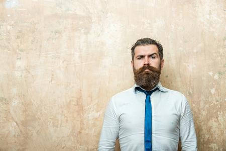 hipster of bebaarde man met lange baard en stijlvolle haren op ernstige gezicht in stropdas en wit overhemd op gestructureerde beige achtergrond, kopie ruimte Stockfoto
