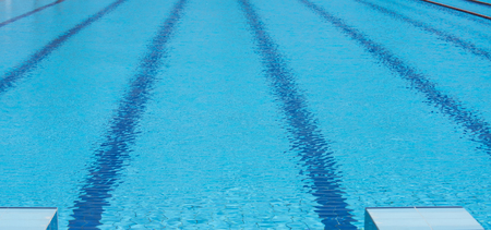 Swimming pool with transparent clear water and lanes with blue rope lines, health and sport workout concept Фото со стока