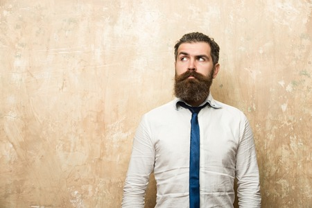 long beard of bearded man or hipster with stylish hair on serious face in tie and white shirt on textured beige background, copy space