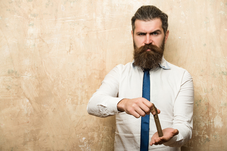 hipster or bearded man with long beard and stylish hair on angry face in tie and white shirt on textured beige background extinguish cigar in hand, copy space Stock Photo