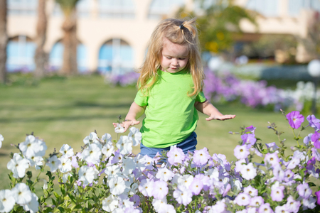 Boy little child with adorable happy face long blond hair in green shirt looking at flowerbed with white and lilac petunia flowers on background of grass Stock Photo