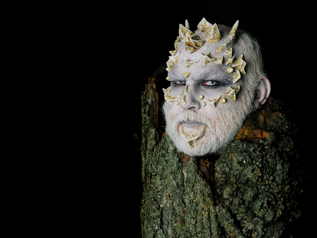 Goblin with horns on head. Druid behind old bark isolated on black. Tree spirit and fantasy concept. Man with dragon skin and bearded face. Monster with sharp thorns and warts, copy space