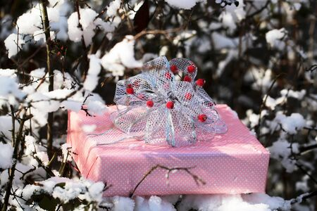 Christmas present on snowy branch. Gift box of pink paper and bow with red berries. xmas and new year background. Winter forest with white snow on trees. Holidays celebration concept.
