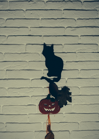 Halloween animal totem. Mystery and superstition concept. Holiday celebration symbol. Black cat and orange pumpkin with tree leaves silhouettes paper cutouts on beige brick wall.