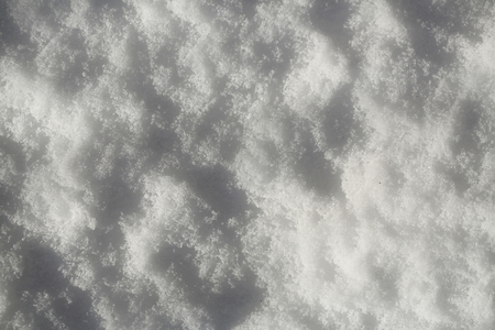 Snow on winter day. White snowy texture on natural background. Christmas and new year. Holidays celebration concept.