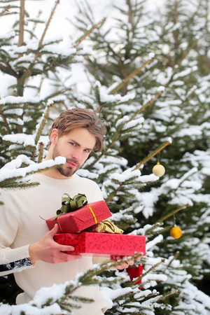 Holidays celebration concept. Season greetings and xmas gifts. Man holding two red boxes in snow wood. Merry Christmas and happy new year. Macho with presents on winter day. Stok Fotoğraf