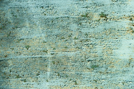 Wall with rough surface. Grunge overlay texture. Paint weathered on green cement background. Neglect, decay and ruin concept Imagens